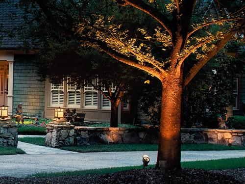 Tree lit with Kichler Landscape Lighting