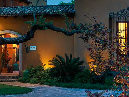 Kichler landscape lights are behind the plants so that the silhouette is featured in contrast. - Landscape Lighting Beam Spread and Light Control: Light where you want it
