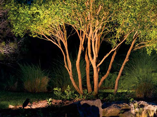 Kichler Accent Landscape Light with Wide Beam Spread