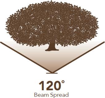120° Beam Spread