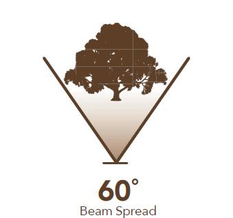 60° Beam Spread