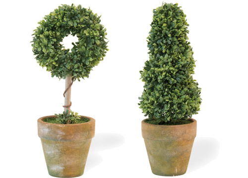 Circle Topiary in Clay Pot and Spiral Topiary in Clay Pot from Boston International